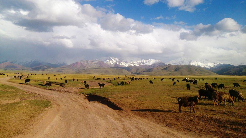 Fahrt durchs Pamir zum Lenin Base Camp