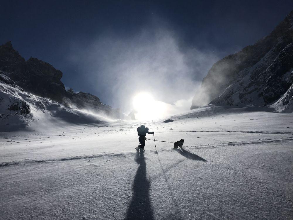Mit Hund auf Skitour