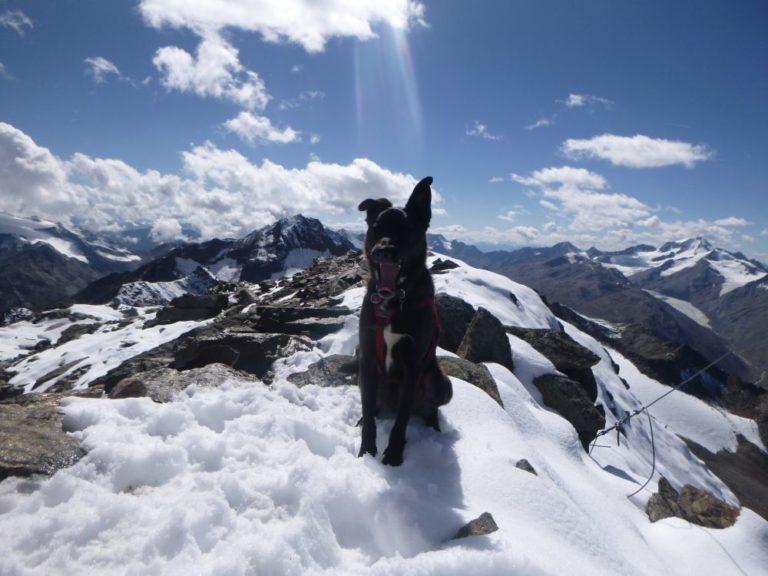 Leichte Alpinkletterei auf die Talleitspitze im Ötztal