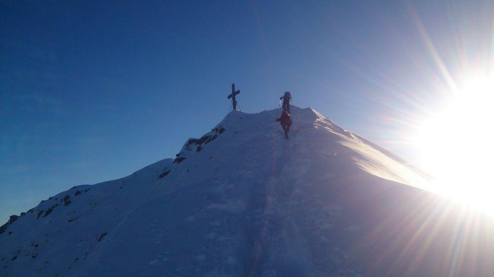 Großes Wiesbachhorn 3564 m – Bergtour mit Hund