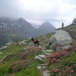 Alpenüberquerung Salzburg Triest mit Hund und Zelt