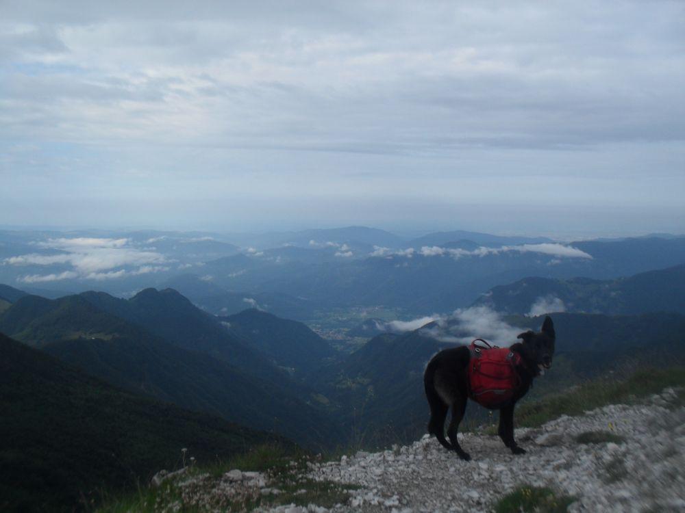 Der letzte... wirklich der letzte Alpenpass