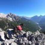 Ruffwear Palisades Pack auf dem Peaks of the Balkans