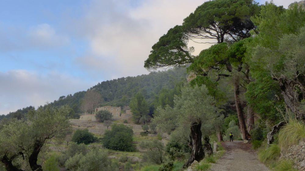 Einsamkeit in den Bergen Mallorcas