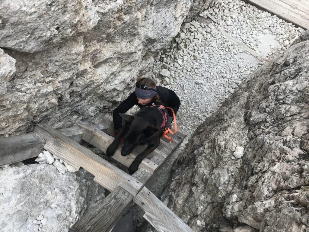 Leitern: lieber hoch als runter!