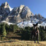 Nach Klettersteigtour mit Hund auf dem Peitlerkofel
