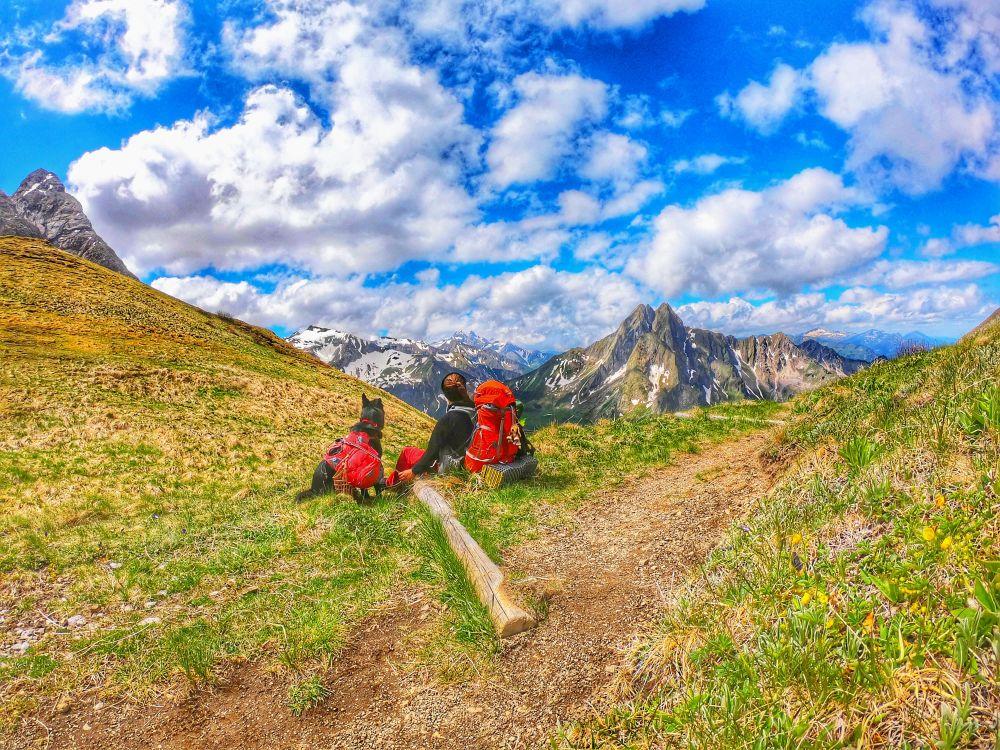 Trekking mit Hund auf der Via Alpina im Allgäu
