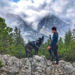 Auf in die Berge - mit Hund