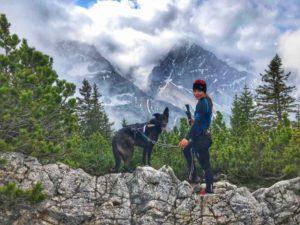 Packliste Alpentrekking GTA – Fernwandern mit Hund