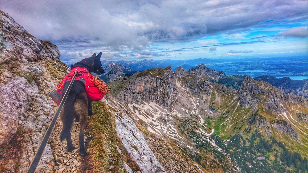 Alpiner Grat an der Hochplatte