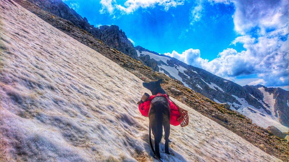 Steile Schneefelder nordseitig