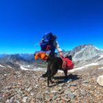 Trekking auf der Alta Via Valle di Susa