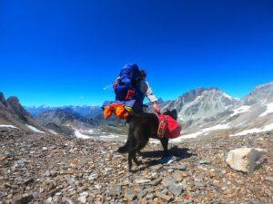 Trekking mit Hund: Alta Via Val di Susa