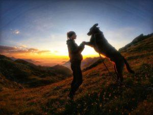Trekking mit Hund: GTA – Schweiz bis Aostatal
