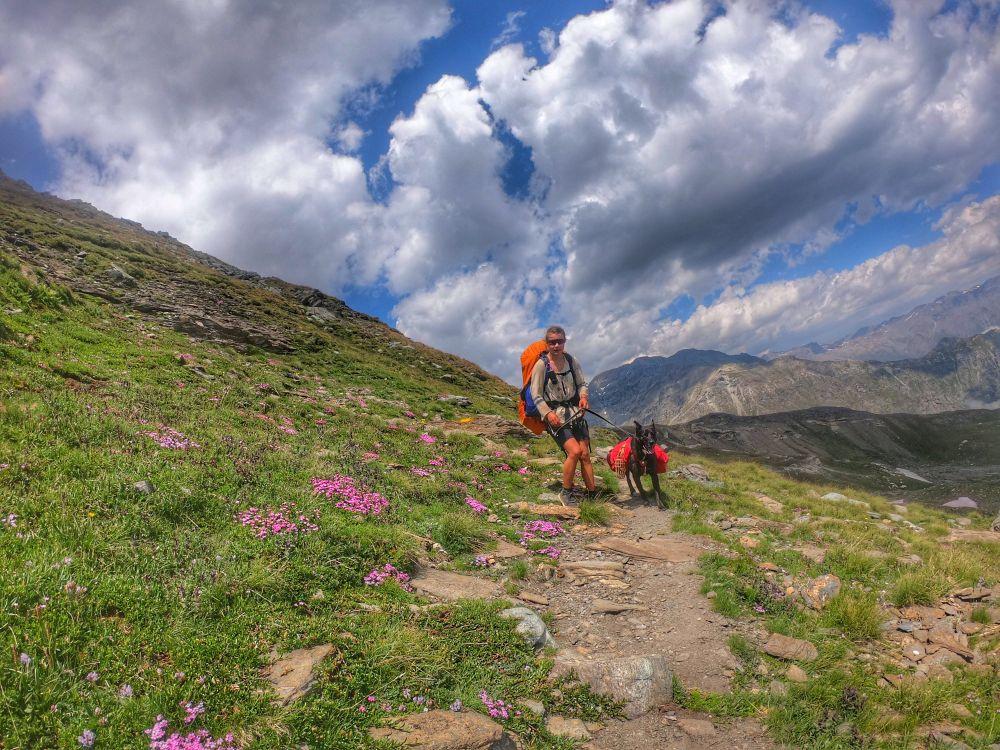 Einsame Pfade - Alta Via Val di Susa