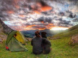 Trekking mit Hund: Via Alpina Schweiz – der Grüne Weg