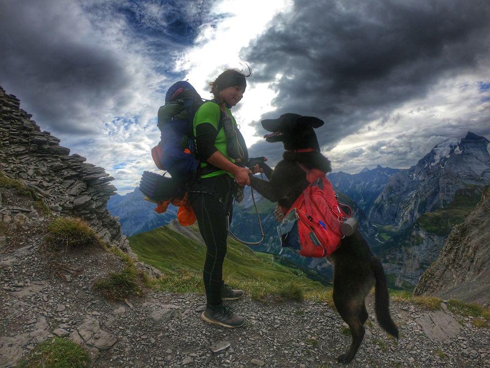 Via Alpina Schweiz mit Hund