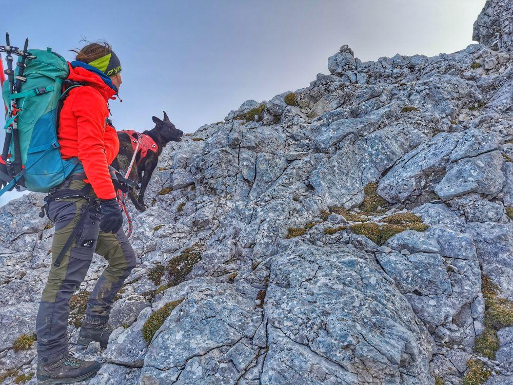 Mit Hund Alpinklettern am Wörner