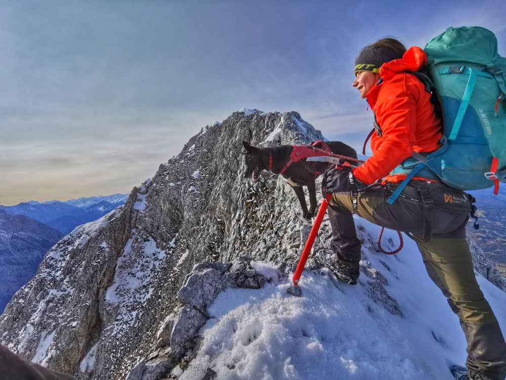 Alpinklettern mit Hund: Wörner 2474 m (Karwendel)
