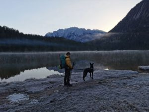 Bergtour mit Hund: Obere Wettersteinspitze (2297 m)