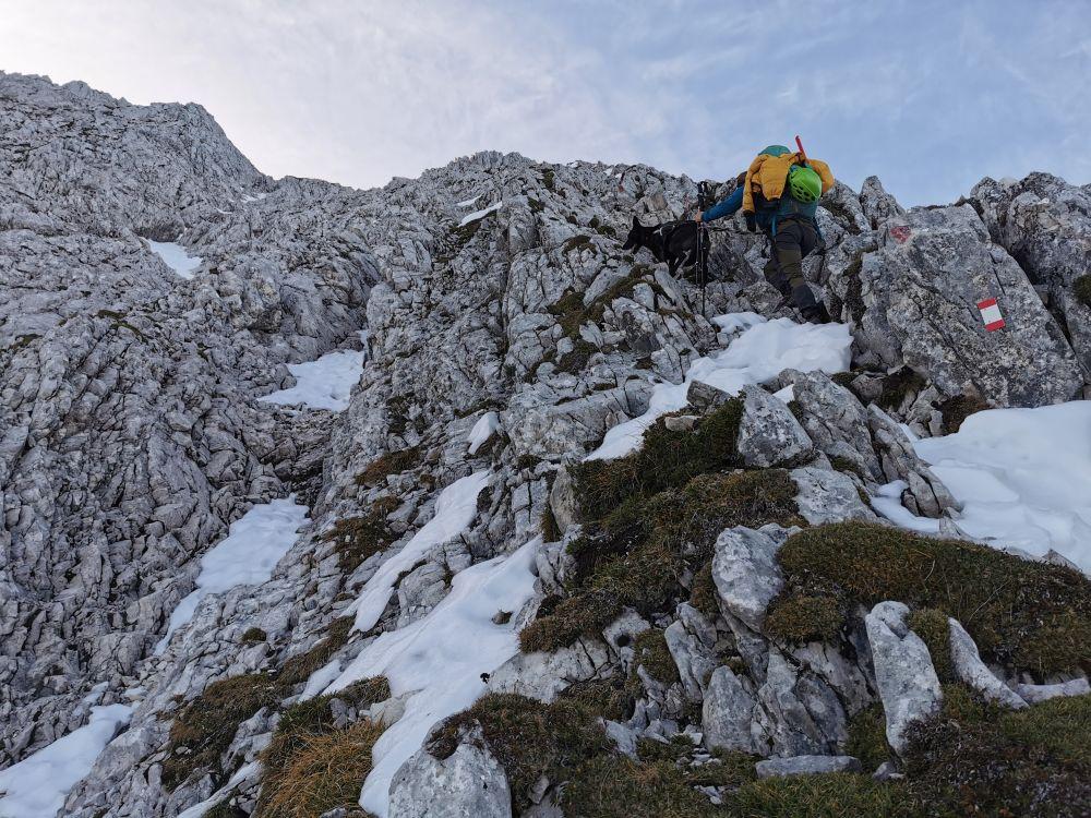 Klettern mit Hund an der Wettersteinspitze