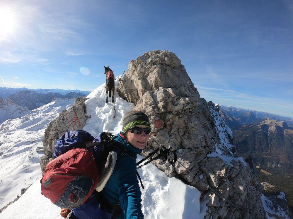 """Gratklettern auf """"hohem"""" Niveau ;) Trekking mit Hund zur Zugspitze"""