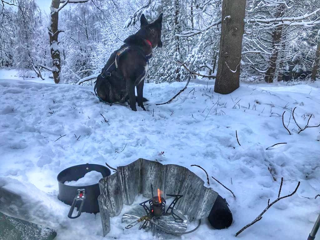 Winterzelten mit Hund - Küche im Schnee