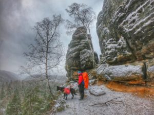 (Winter-) Trekking im Elbsandsteingebirge mit Hund (geplant: Malerweg mit Hund)