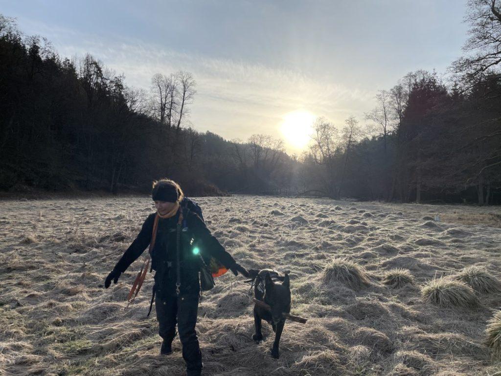 Froststimmung am Morgen