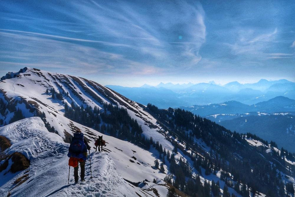 Allein reisen mit Hund, ob Berg oder Tal...