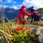 Granatspitzgruppe - Trekking mit Hund