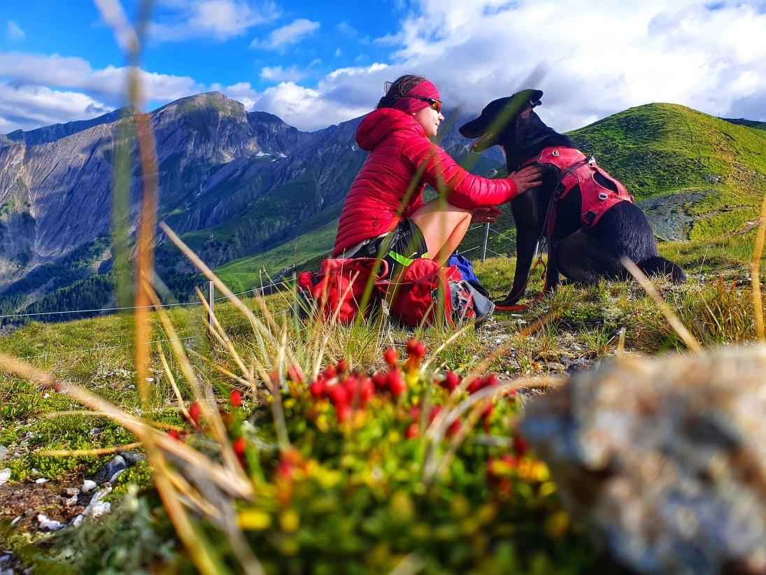 Trekking mit Hund: Silesiahöhenweg am Groß Glockner, Hohe Tauern