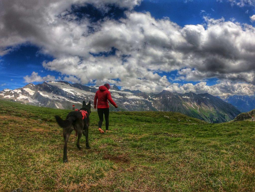 Silesia-Höhenweg - Trekking mit Hund