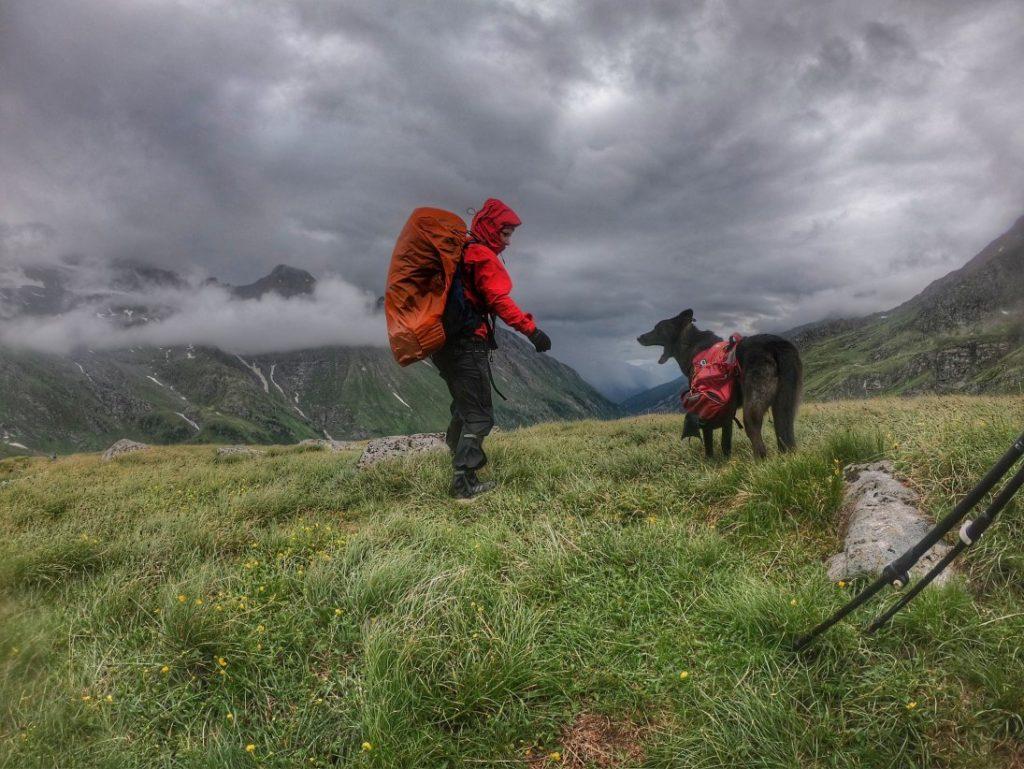Sintflut am Silesia Höhenweg mit Hund