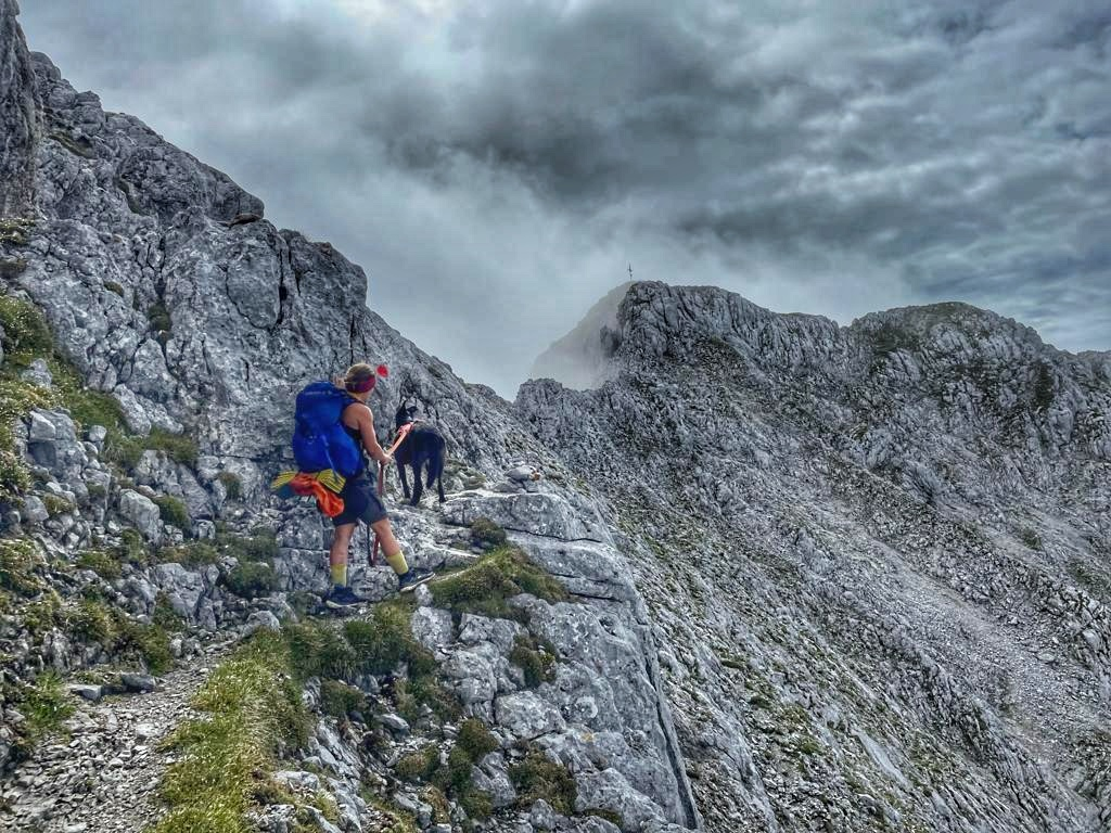 Bergtour mit Hund – Treffauer und Tuxegg im Wilden Kaiser