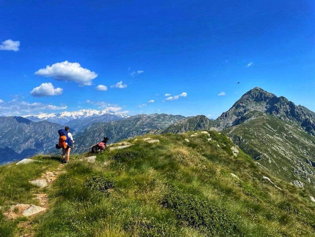 Höhenweg im Aostatal mit Hund... hoch oben, ein Traum