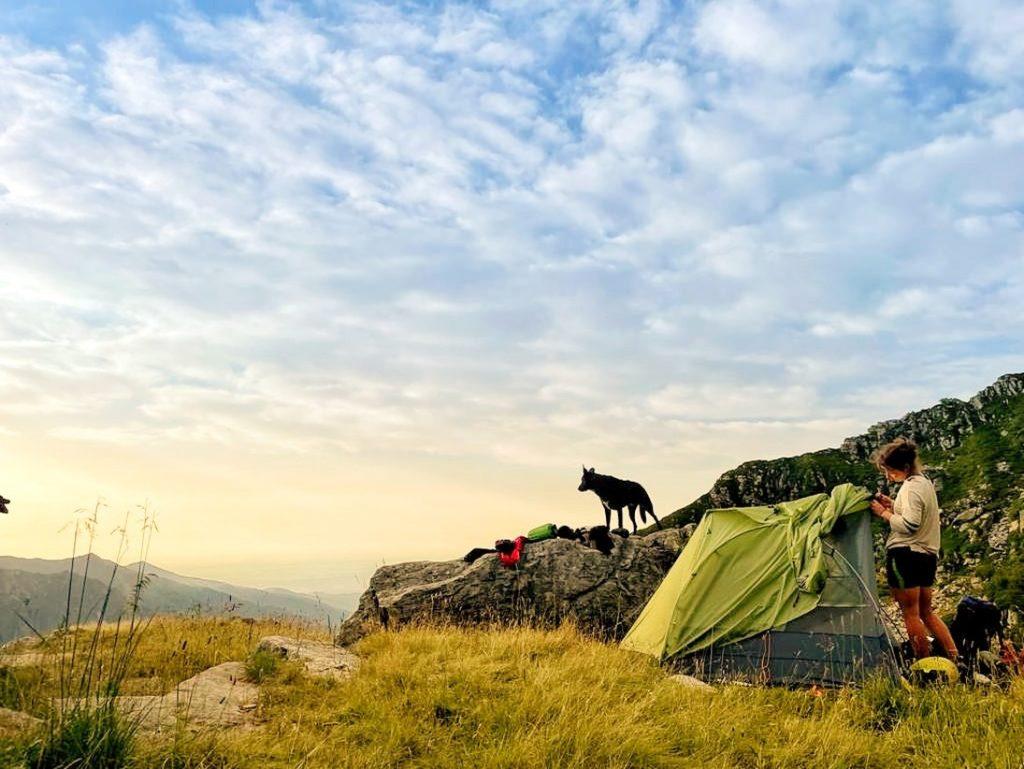 Traumhafte Einsamkeit in den Bergen