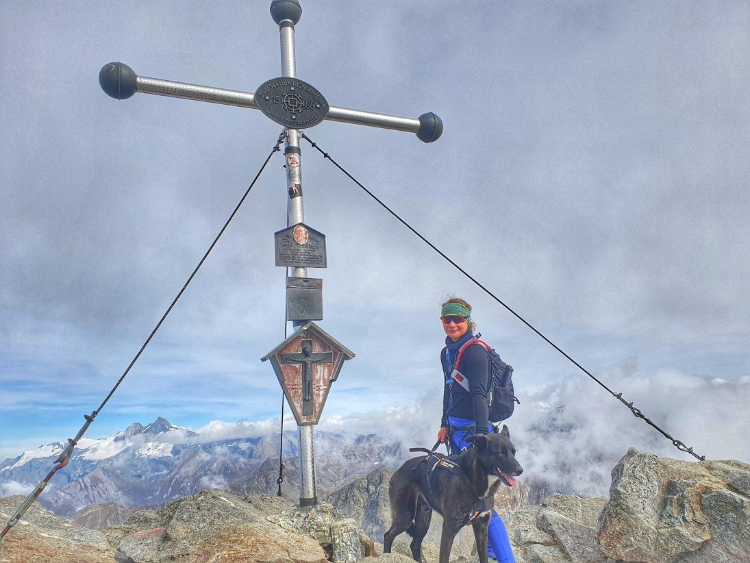 Bergtour mit Hund: Überschreitung Hochschober (3242 m) in Osttirol